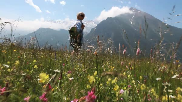 POV from hikers feet following a middle aged woman through alpine meadow full of wildflowers Royalty-free stock video