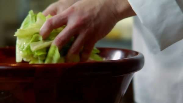 a chef picking salad from a bowl and placing it on a plate Royalty-free stock video