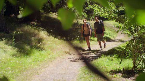 Fit and healthy young couple hiking through park Royalty-free stock video