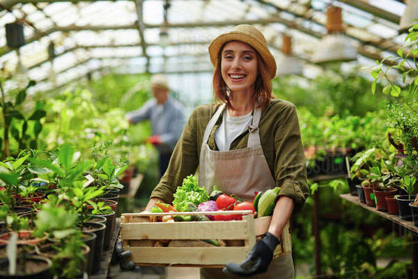 Successful gardener with ripe vegetables Royalty-free stock photo