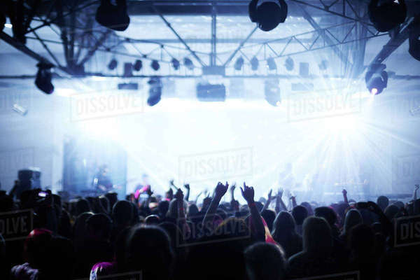 Crowd at a concert shot from behind Royalty-free stock photo