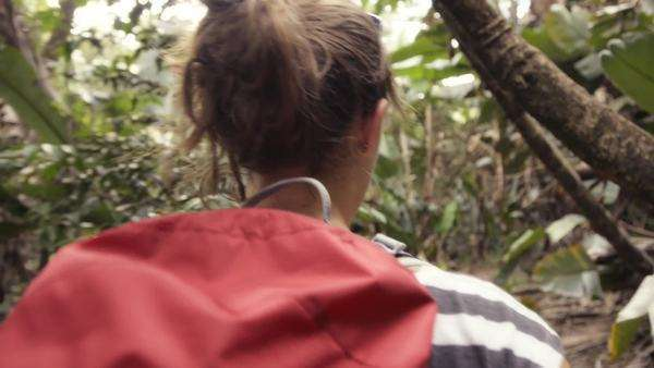 Woman hiking in jungle Royalty-free stock video
