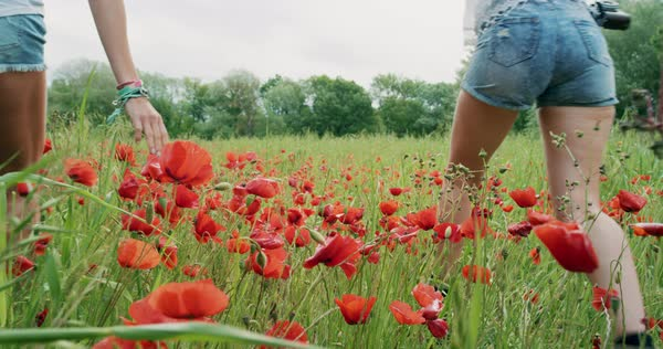 Two young women wearing denim shorts running through field of wild poppies dancing and spinning in slow motion enjoying travel  Royalty-free stock video