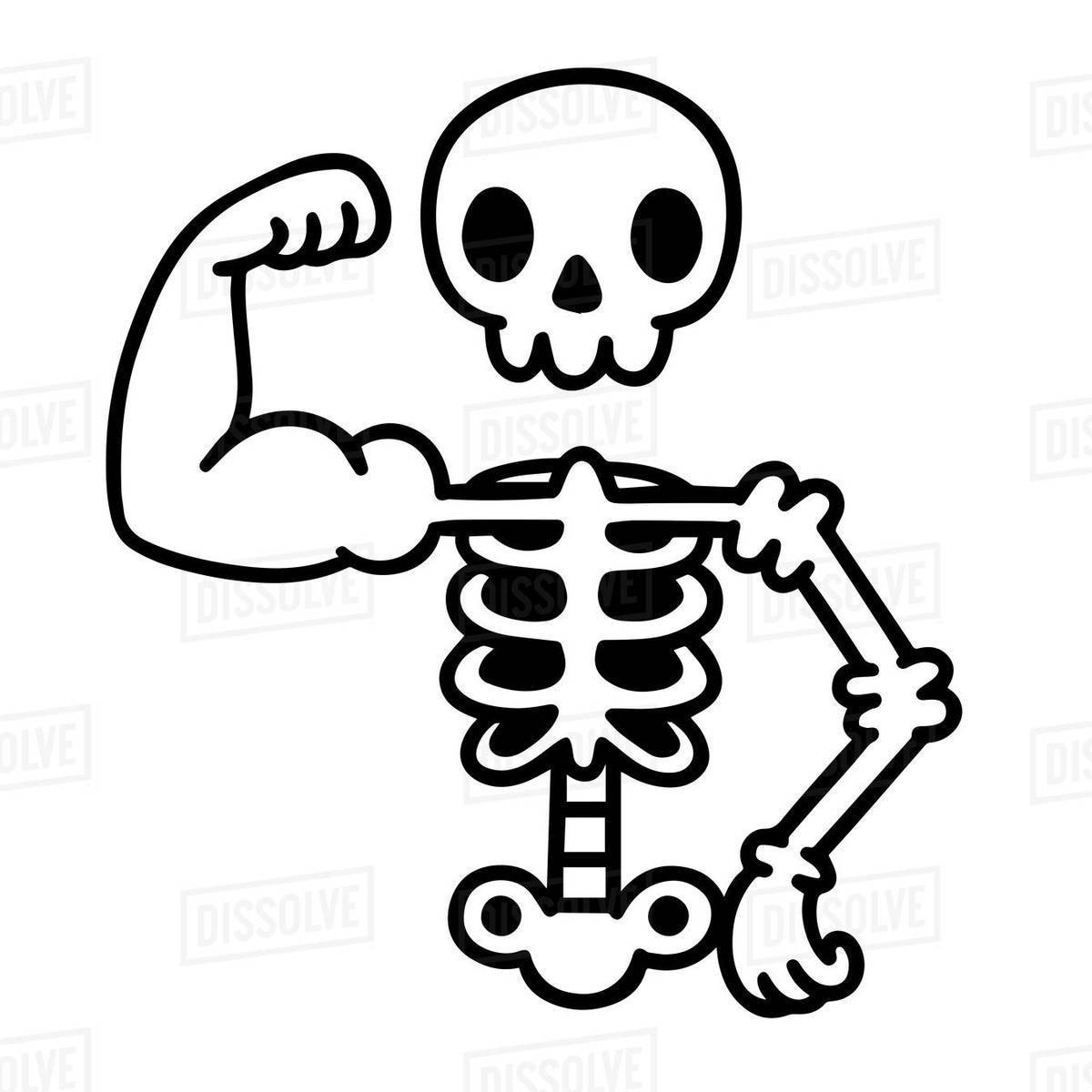 Illustration of a skeleton showing biceps Royalty-free stock photo