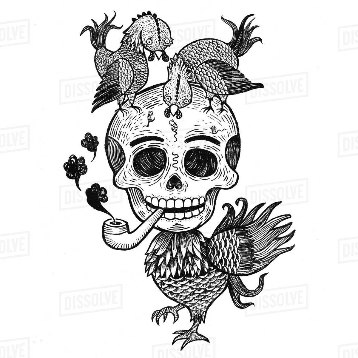 Illustration of chicken skull smoking against white background Royalty-free stock photo