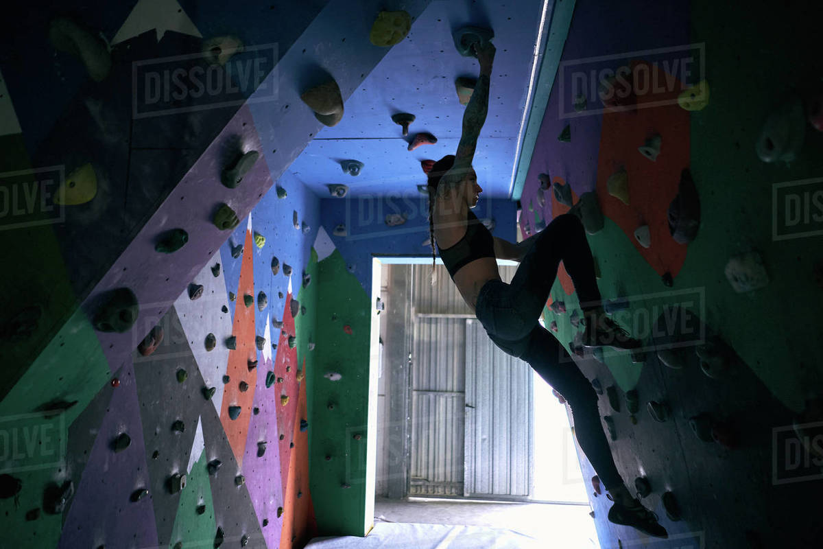 From below side view of woman athlete tattooed powerful woman climbing on colorful wall with ledges for climbers in room Royalty-free stock photo