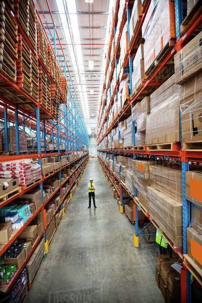Portrait of a warehouse manager in an aisle of a warehouse Royalty-free stock photo