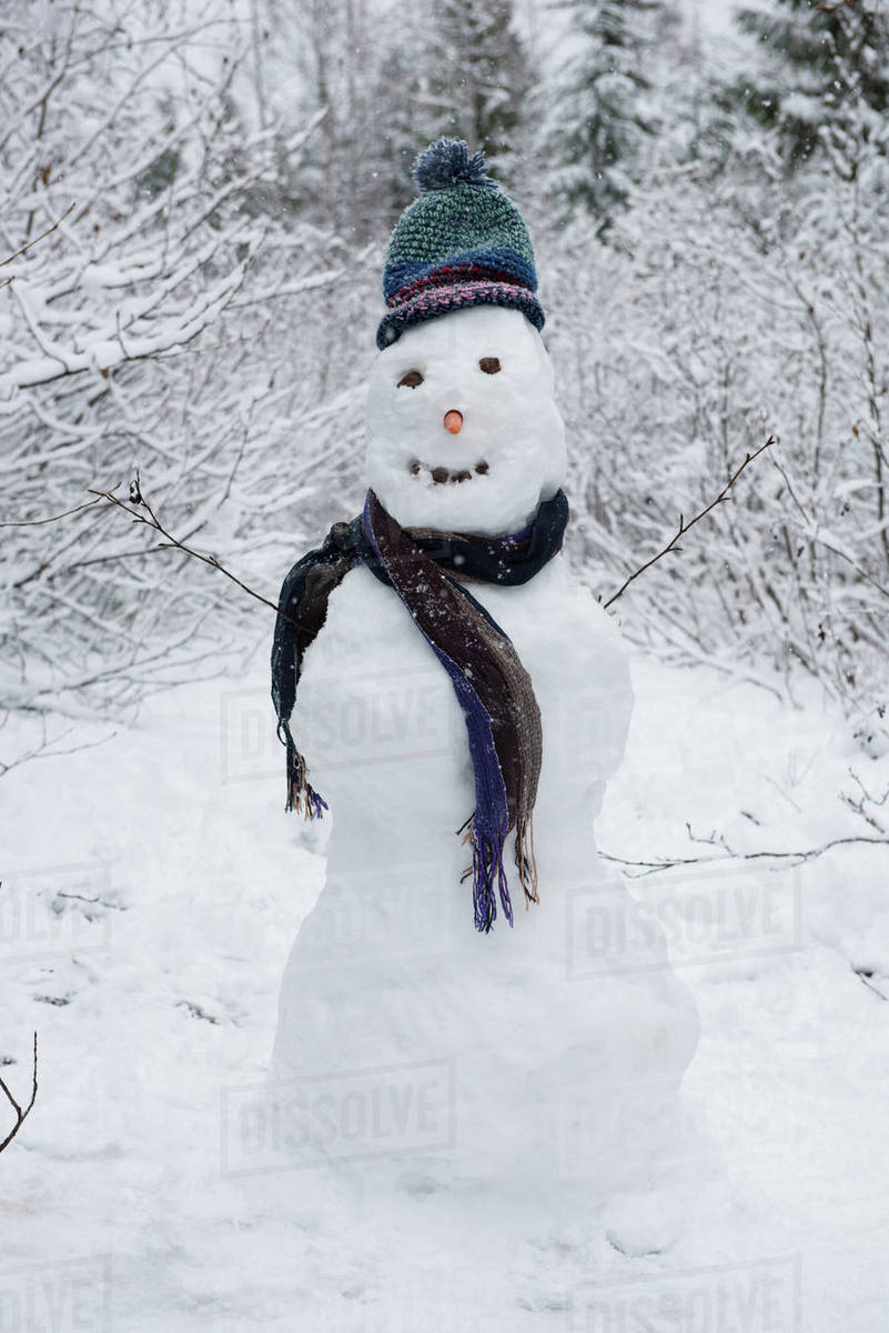Snowman wearing scarf and knit hat on beautiful snowy day - Stock ... e57e8b0bf9f