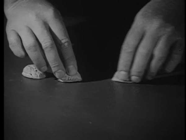 Close-up of hands playing game with walnut shells Royalty-free stock video