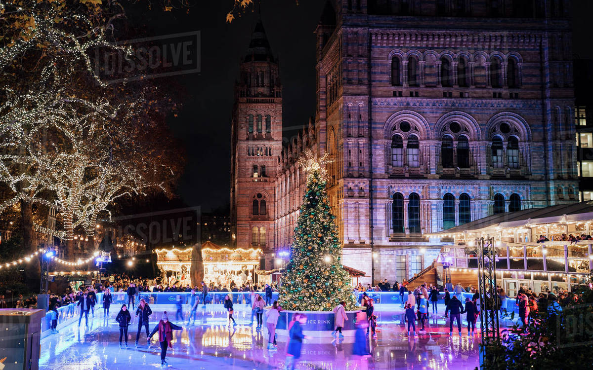 Christmas Ice Skating London.Christmas Tree And Ice Skating Rink At Night Outside The Natural History Museum Kensington London England United Kingdom Europe Stock Photo