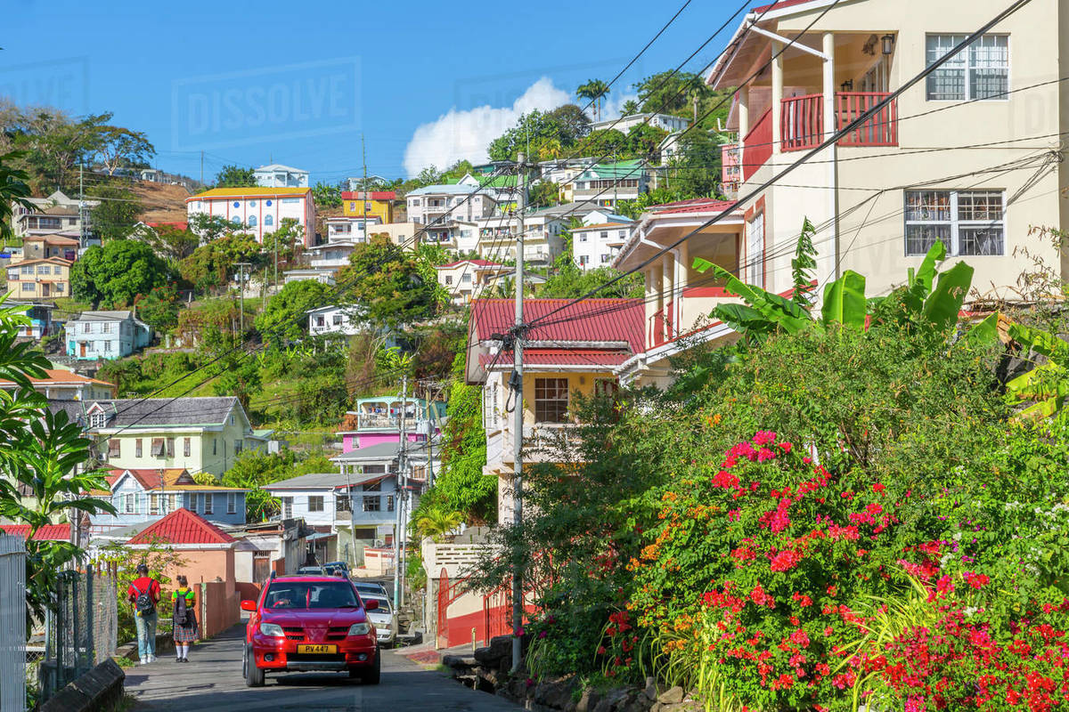 View of colourful houses that overlook the Carenage of St. George's, Grenada, Windward Islands, West Indies, Caribbean, Central America Royalty-free stock photo