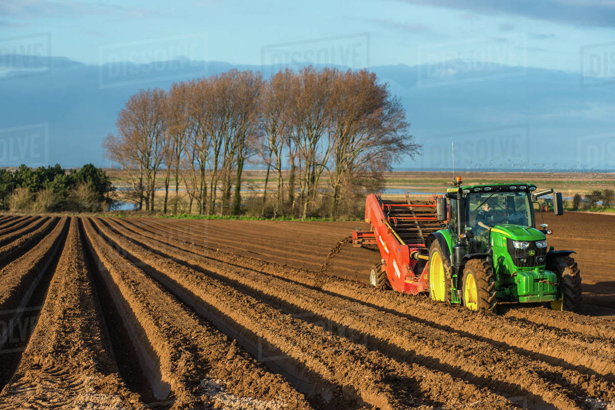 Rural landscape, tractors ploughing and sowing fields in early Spring time at Burnham Overy, Norfolk, East Anglia, England, United Kingdom, Europe Royalty-free stock photo