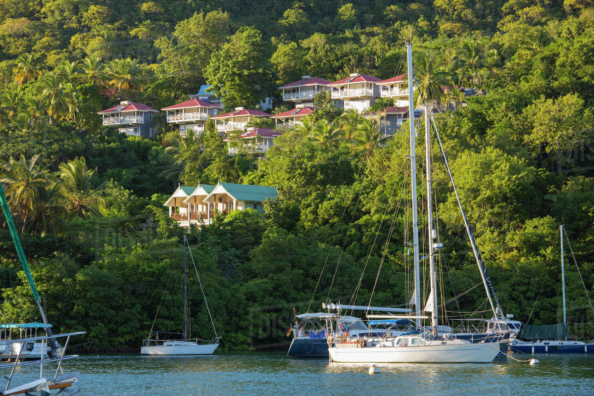 View across the tranquil harbour to wooded hillside, sunset, Marigot Bay, Castries, St. Lucia, Windward Islands, Lesser Antilles, West Indies, Caribbean, Central America Rights-managed stock photo