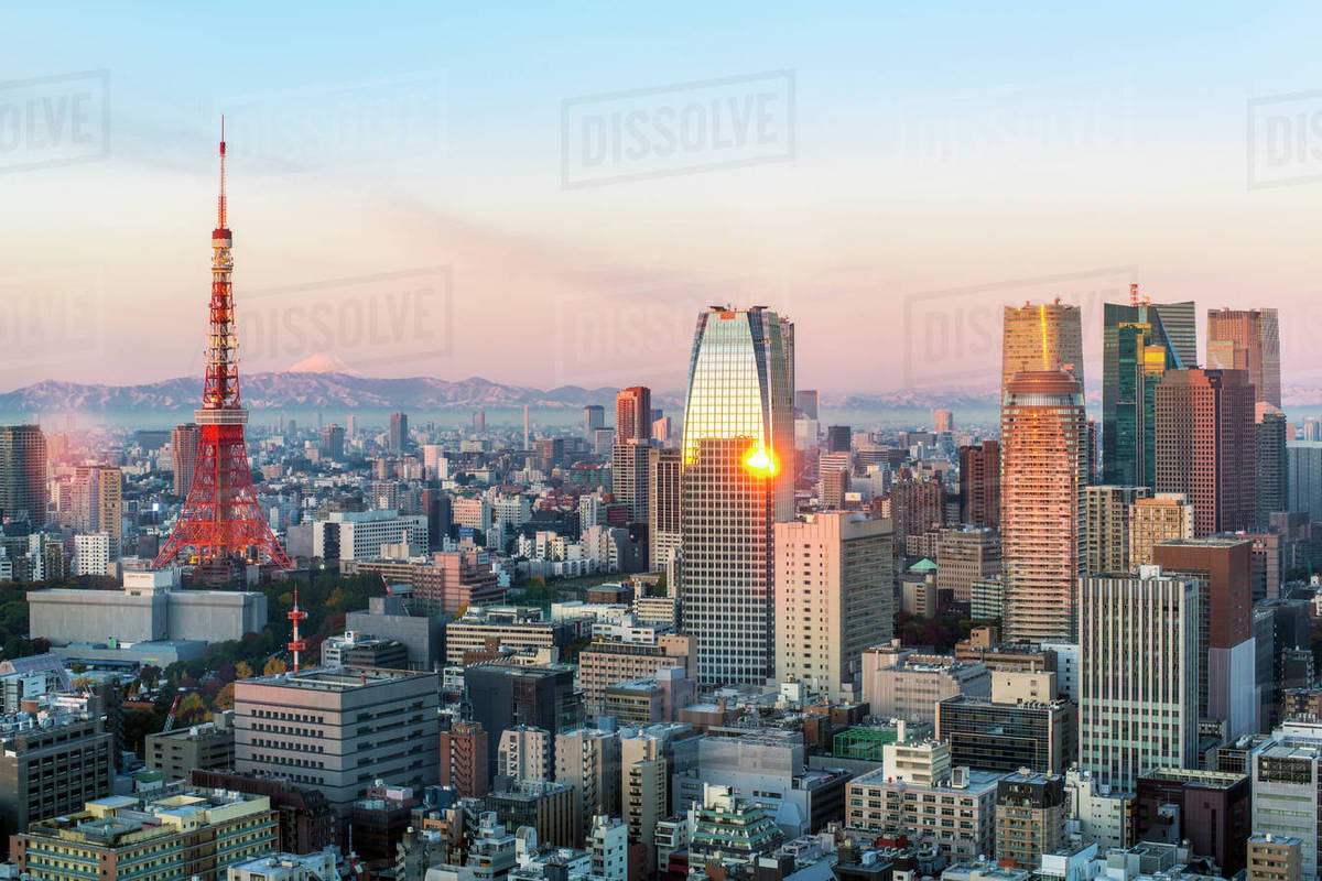 elevated evening view of the city skyline and iconic tokyo tower