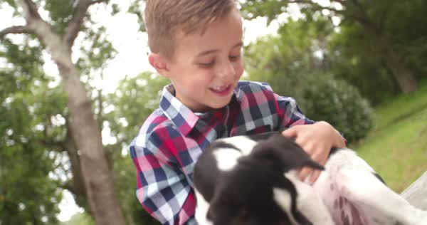Loving child stroking and hugging his pet animal friend, a mischievous looking crossbreed puppy dog with black and white fur. Royalty-free stock video
