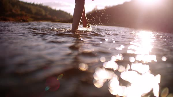 Close up of woman's legs walking barefoot in mountain river and connecting with nature Royalty-free stock video