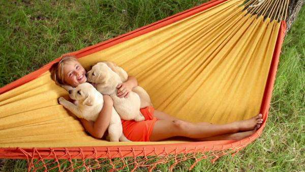 Happy girl holding Labrador puppies while swinging in hammock in slow motion Royalty-free stock video
