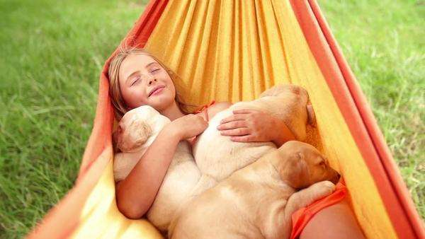 Girl sleeping with puppies in hammock Royalty-free stock video