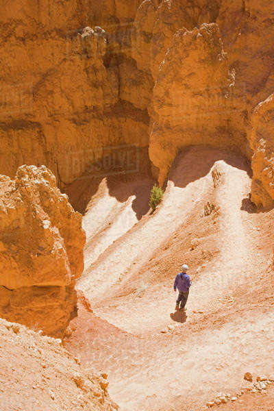 UT, Bryce Canyon National Park, hiker on the Navajo Loop trail Royalty-free stock photo