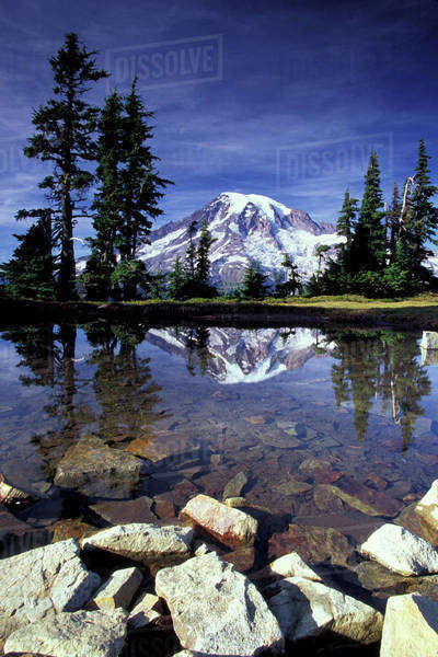 N.A., USA, Washington, Mt. Rainier National Park, Mt. Rainier reflected in tarn Royalty-free stock photo