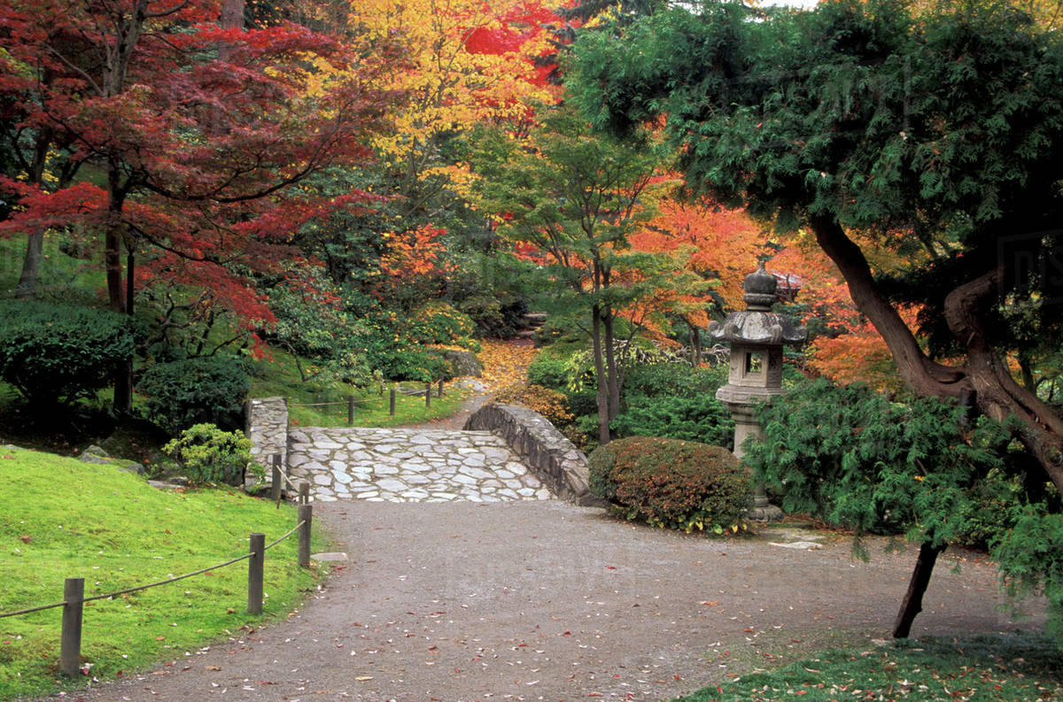 Pathway And Stone Bridge With Autumn Colors At The Japanese Garden