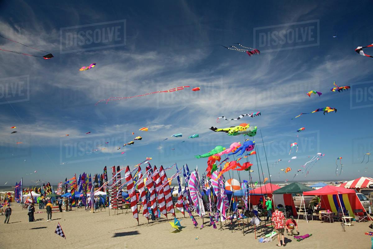 Wa Long Beach International Kite Festival Kites And Banners
