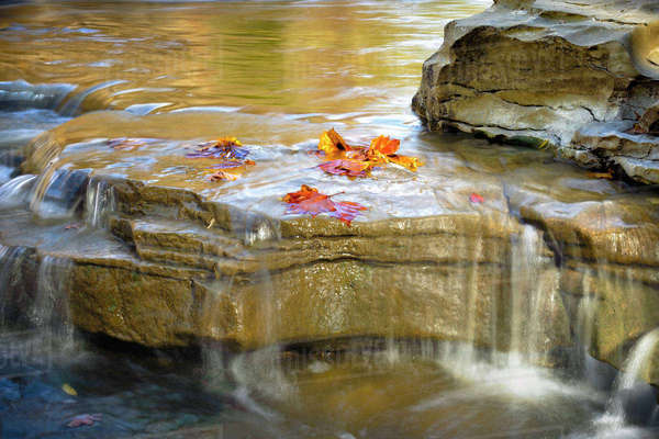 USA, Indiana. Cataract Falls State Recreation Area., close-up of rocks, colored leaves, lower Cataract waterfall. Royalty-free stock photo