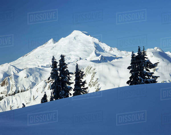 Mount Baker view from Kulshan Ridge at Artist's Point in winter, Heather Meadows Recreation Area, Washington State, USA Rights-managed stock photo