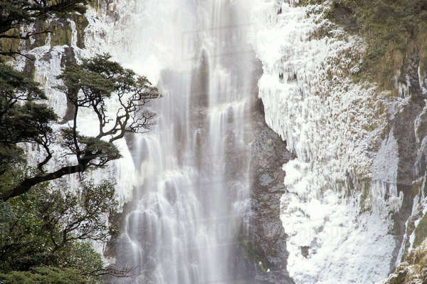 Devils Punchbowl Falls, Frozen in Winter, Arthur's Pass, Canterbury, South Island, New Zealand Rights-managed stock photo