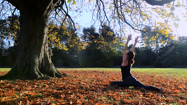 Woman doing yoga in park Royalty-free stock video