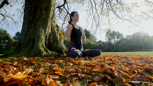 Woman sitting in park in yoga lotus pose and stretching arms Royalty-free stock video