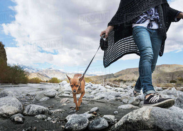 Neck down view of woman walking dog on rocky riverbed Royalty-free stock photo