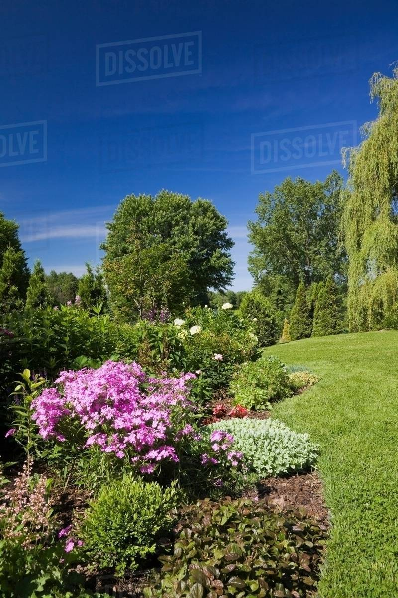 Garden Lawn With Border Of Various Plants Shrubs And Flowers