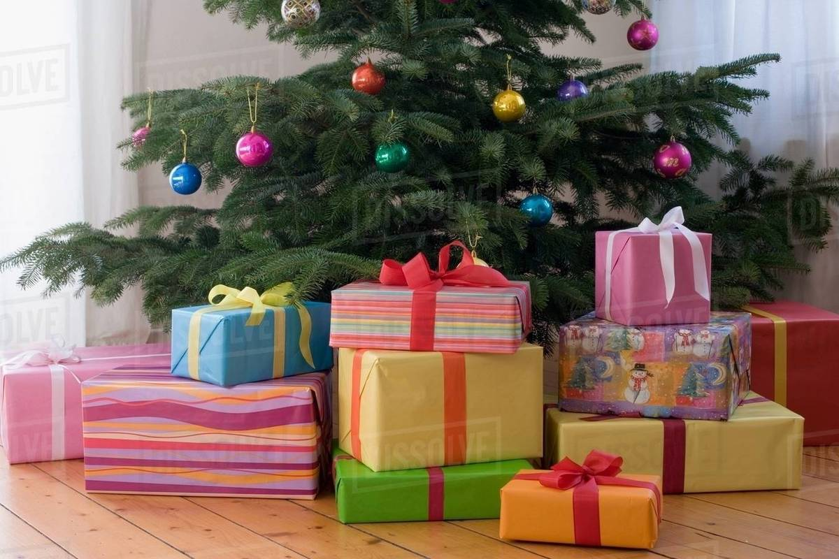 Christmas Presents Under Tree.Christmas Presents Under The Tree Stock Photo