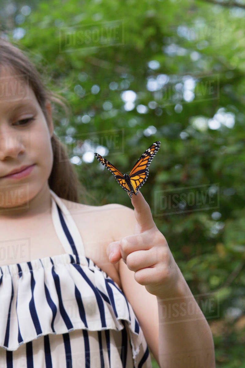 5df4cfa5f Girl holding monarch butterfly on finger - Stock Photo - Dissolve