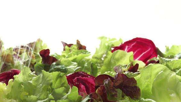Washing mixed salad leaves Royalty-free stock video