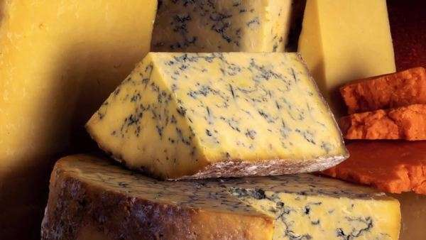 Cheese Still Life Royalty-free stock video