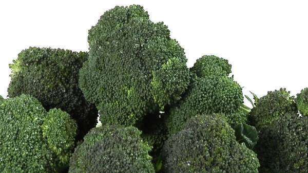 Broccoli florets laying down Royalty-free stock video