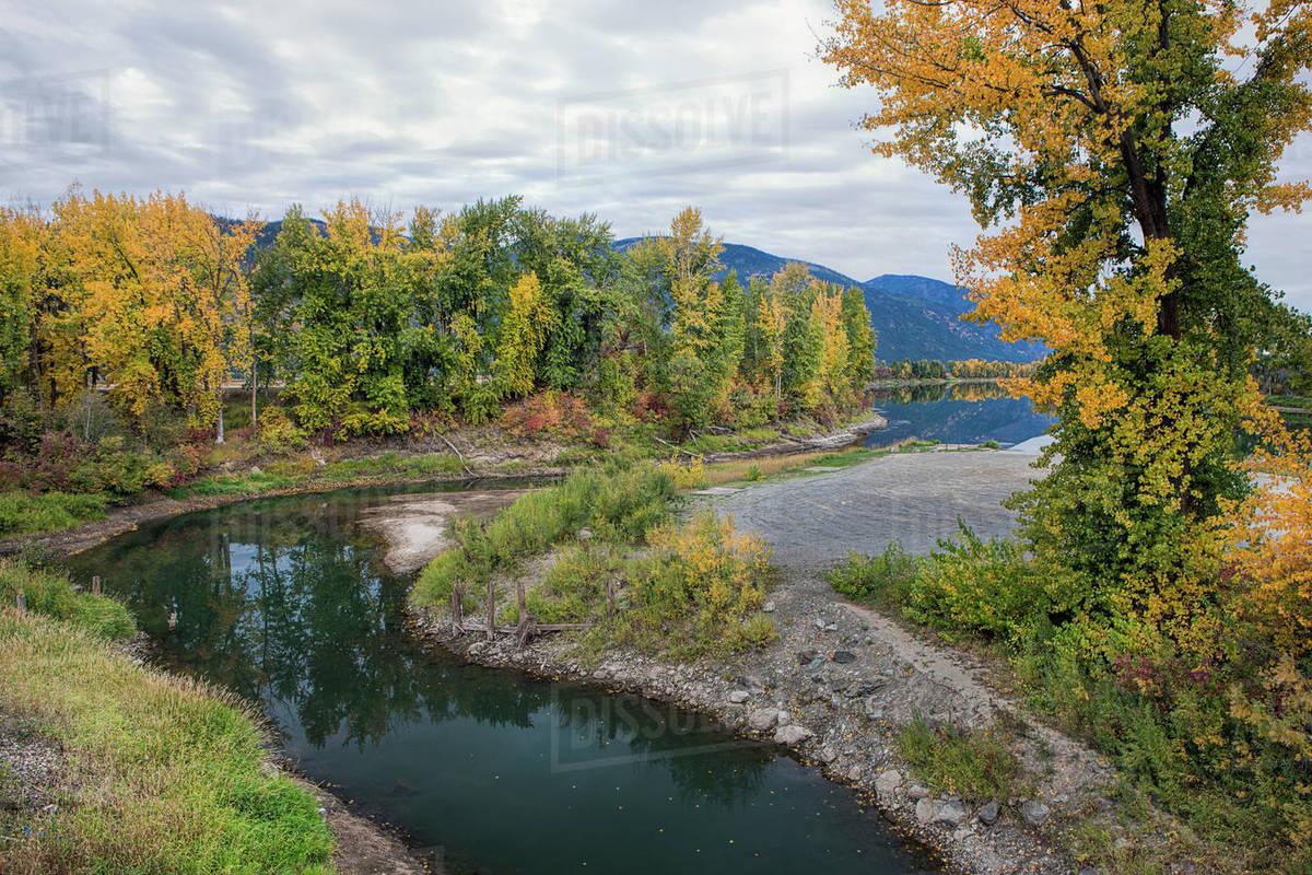 Pretty fall colors along the Kootenai River near Bonners Ferry, Idaho Royalty-free stock photo