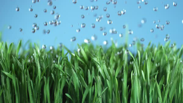 Water falling onto green grass in super slow motion Royalty-free stock video