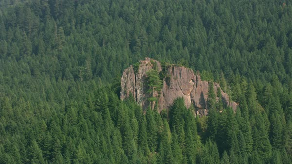 Aerial shot of rock outcropping in Oregon forest .   Royalty-free stock video