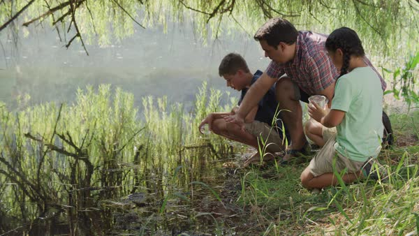 Kids at outdoor school look at pond water with teacher Royalty-free stock video