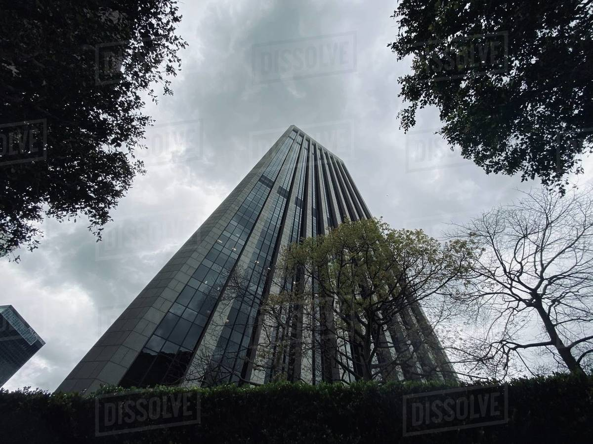 LOS ANGELES, CA, MAR 2020: view of Bank of America skyscraper through trees on overcast day in Downtown Royalty-free stock photo