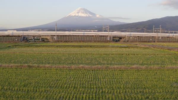 Japan, Honshu, Mount Fuji, Shinkansen Bullet Trains passing
