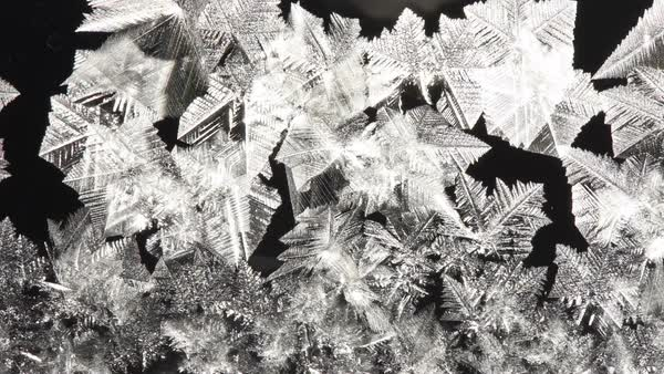 Timelapse footage of ice crystals forming on moist glass in air temperatures of -15 degrees Celsius (-5 Fahrenheit). Rights-managed stock video
