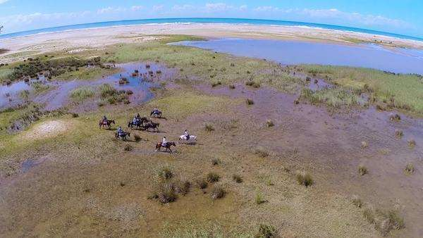 Aerial shot of a group on a horseback safari in St Lucia Rights-managed stock video