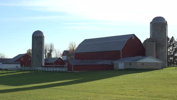 Establishing shot of a Wisconsin dairy farm as cows enter the barn. Royalty-free stock video