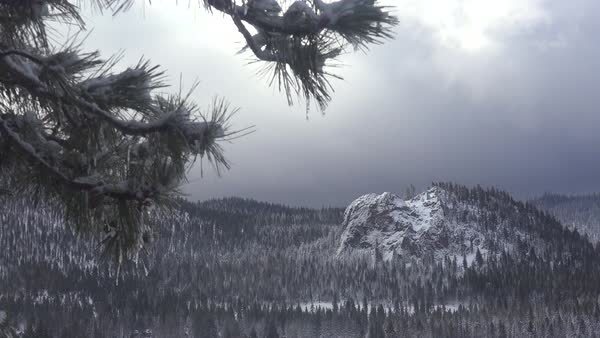 Clouds and fog move over a beautiful snow scene in winter in the high Sierra Nevada mountains. Royalty-free stock video