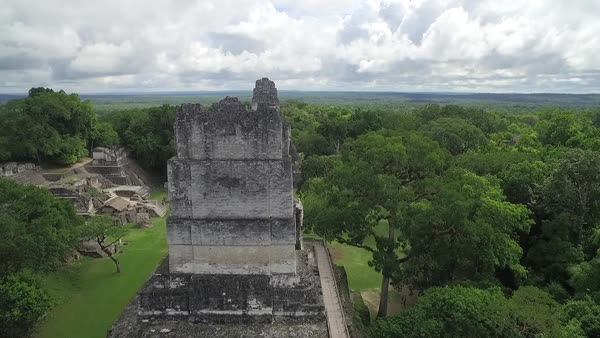 Spectacular rising aerial shot over the Tikal pyramids in Guatemala. Royalty-free stock video
