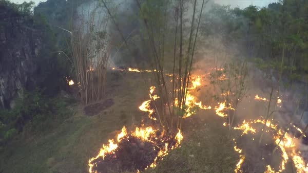 Dramatic aerial over a slash and burn agricultural fire in a rainforest area. Royalty-free stock video